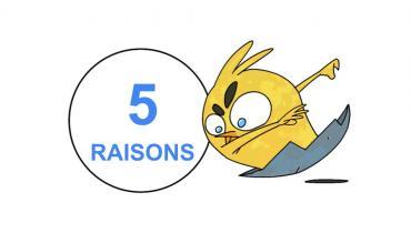 5 RAISONS DE PASSER LE HIYOKO LEVEL TEST N7 !